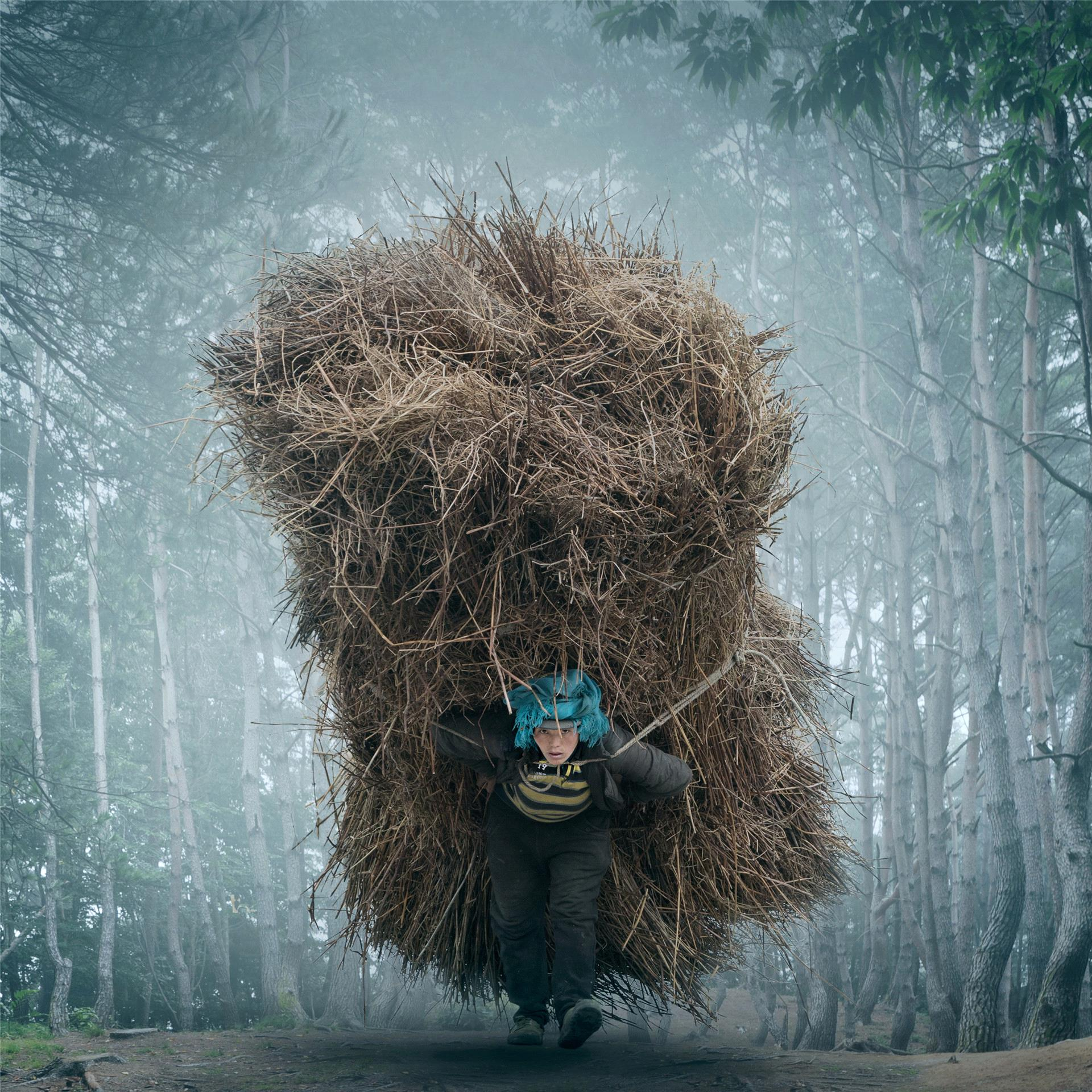 Certificate of Commendation - Yan Yang (China) - Bear A Heavy Burden